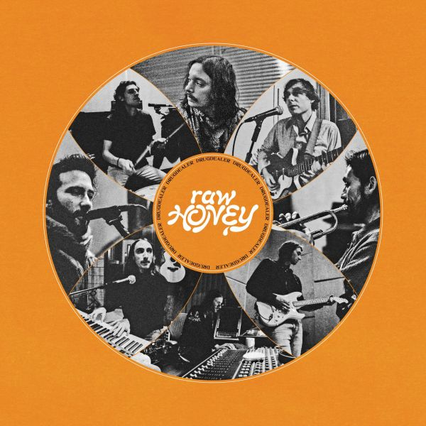 Drugdealer - Raw Honey (LP)