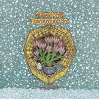 Waveform Transmission - V 3.0-3.9 (2LP)