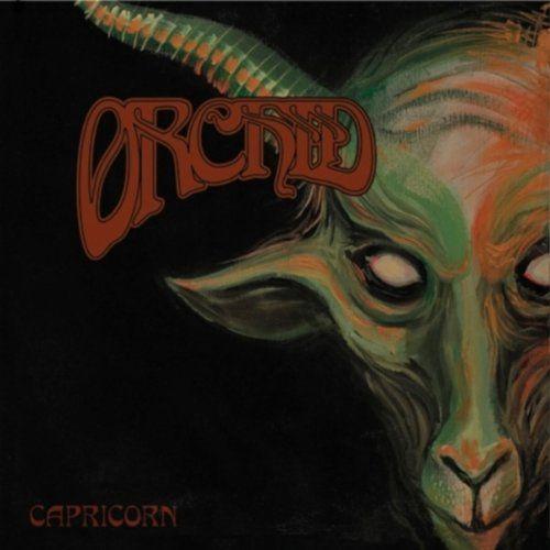 Orchid - Capricorn