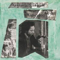 Anima-Sound (Limpe Fuchs Archive) - Im Lungau