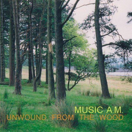 MUSIC AM - unwound from the wood