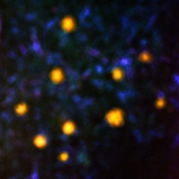 Recondite - Daemmerlicht (2LP)