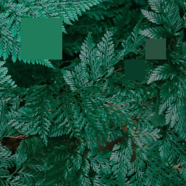 Nebraska - Metaphor to the floor EP (Ft. Laurence Guy remix)