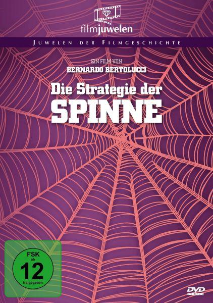 Die Strategie der Spinne